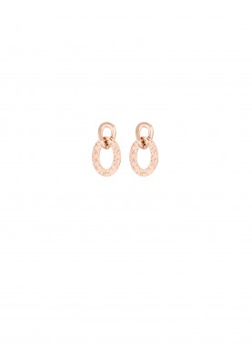 LJ1157 Earrings in Stainless Steel GR