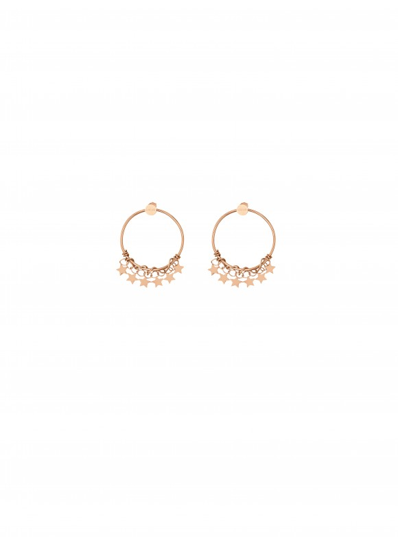 LJ1218 Earrings in Stainless Steel GR